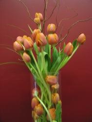 mix. flower show, plastic club, flowers.2011 087