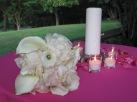 wedding Andra & Bob 6-24-2011 069